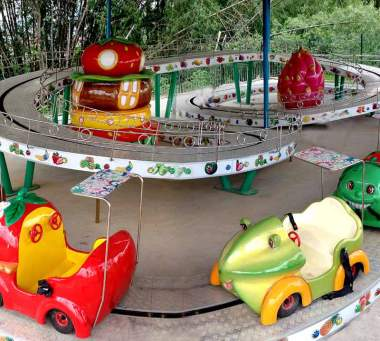 Mini Shuttle Roller Coaster